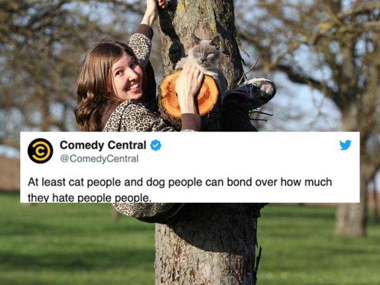 Dog People And Cat People Will Never Understand Each Other
