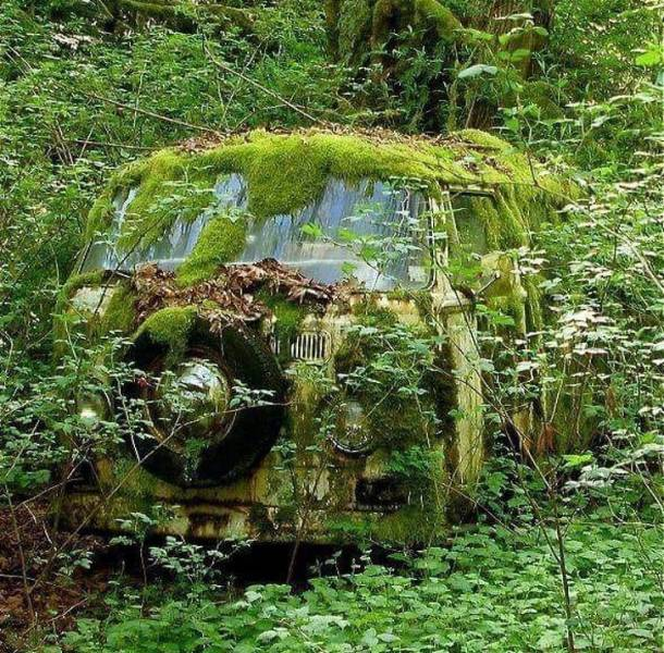 In The End, Nature Claims All