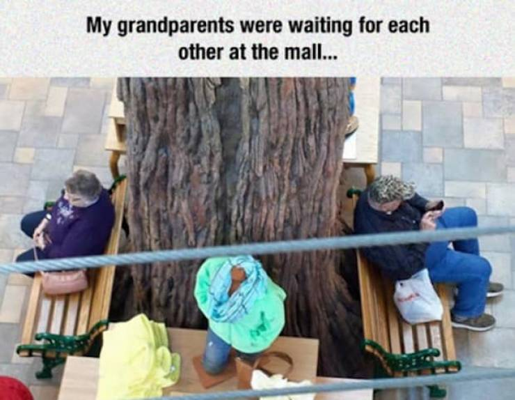 Elderly People Are Priceless