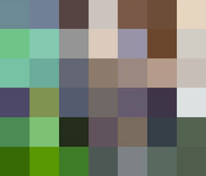 One Pixel For Each Remaining Animal Of Corresponding Endangered Species