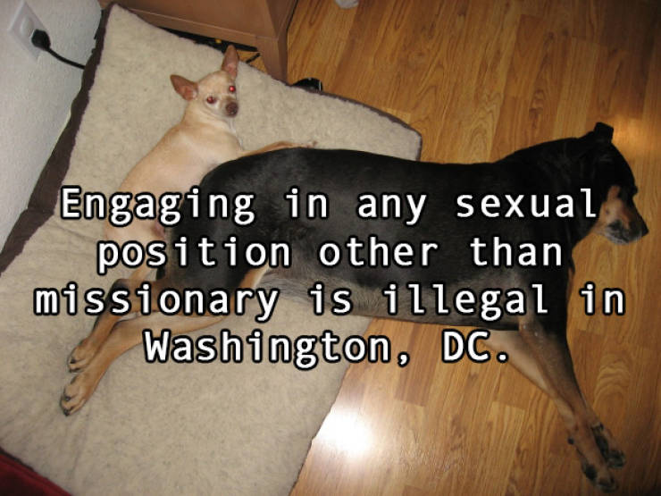 US Has Some Pretty F###ed Up Sex Laws…