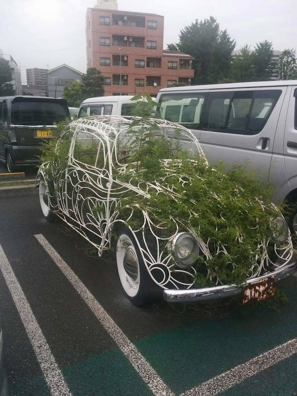 What Did They Do To Their Cars?!
