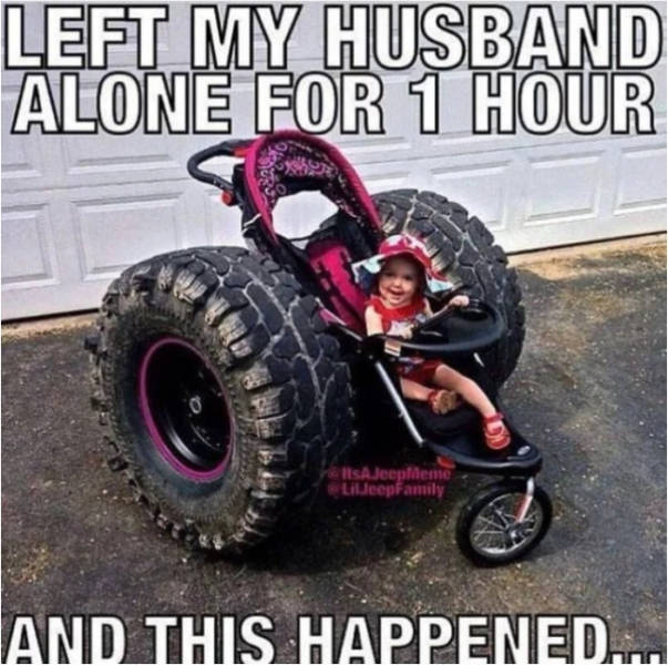 Married Life Illustrated In Memes