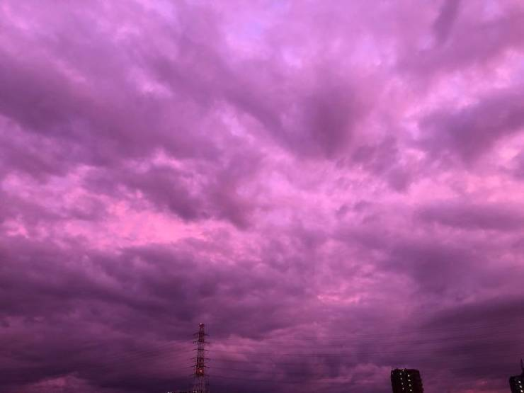 Japan's Skies Turn Purple, But It's Not An Innocent View