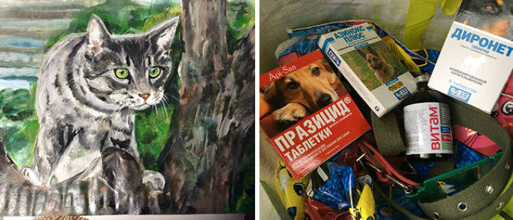 9-Year-Old Volunteer Who Makes Money For Animal Shelters Using His Talent
