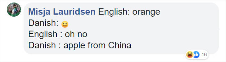 If All The Languages Were Translated Literally