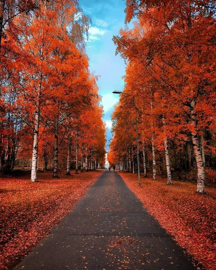 Autumn Is Different In Different Parts Of The World