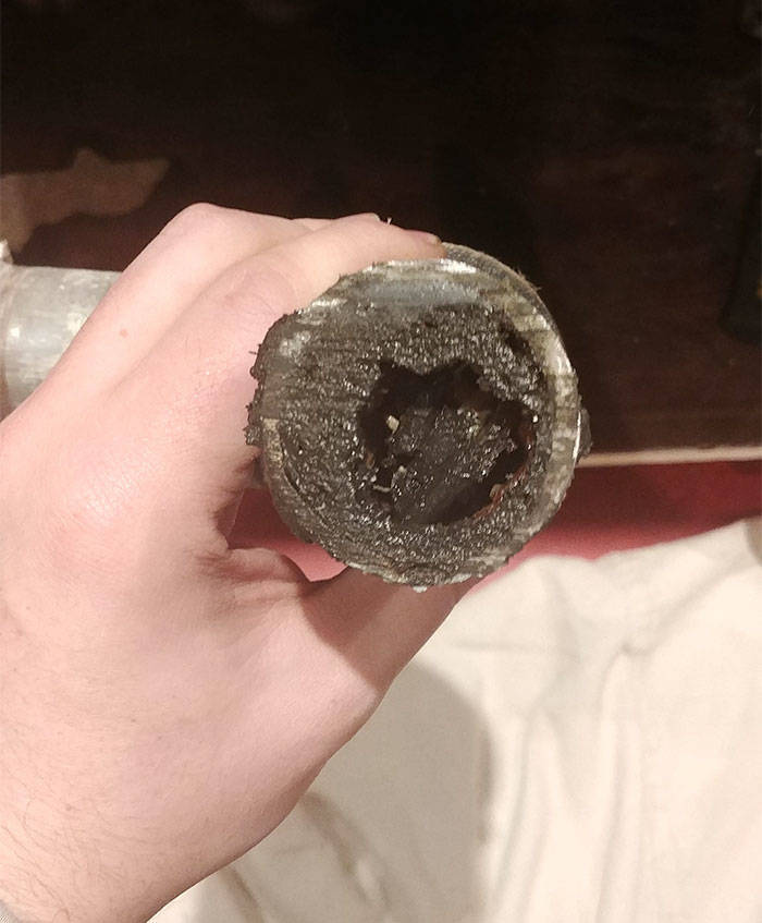 Plumbers See Some Weird Stuff While At Work