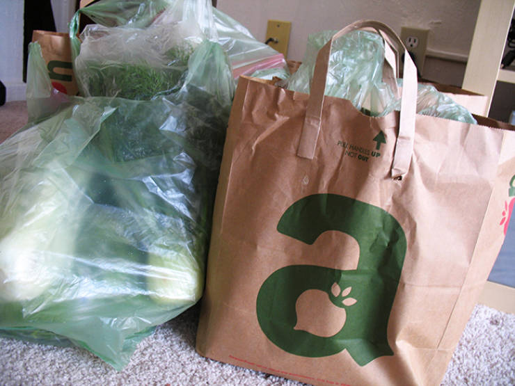 Plastic Bags Had Such A Noble Purpose…