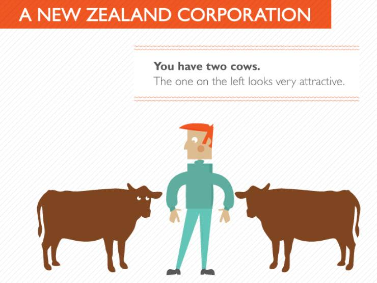 Everything Can Be Explained With Just Two Cows
