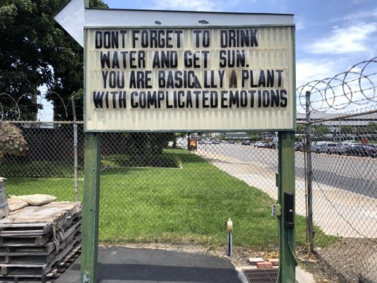 These Signs Are Worthy Of Your Attention