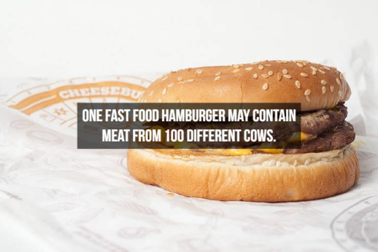 These Food Facts Are Delicious!