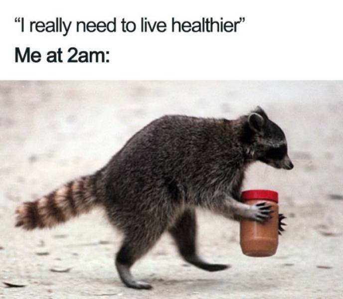 Not Today, Gym And Diet Memes, Not Today