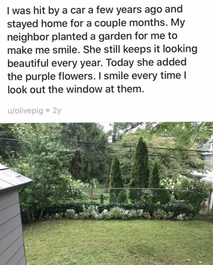 So, Good Neighbors Do Actually Exist!
