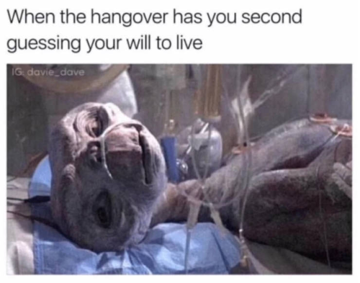 These Hangover Memes Want To Kill Themselves Too