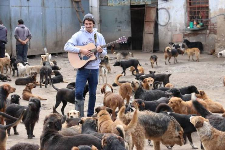 This Man Started Taking In Unwanted Dogs, Now There's A Shelter With 750 Of Them