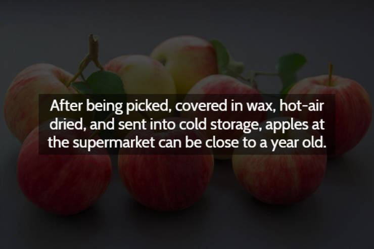 These Creepy Facts Will Make You Shiver
