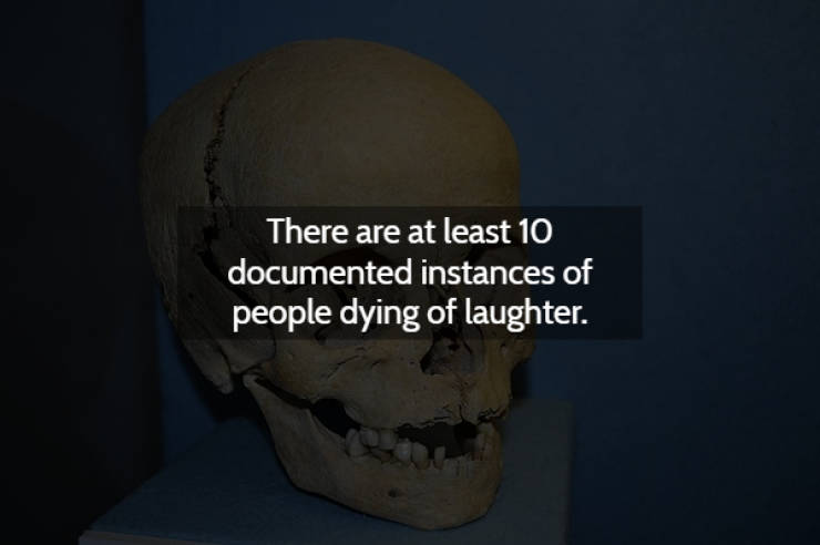 Did Someone Order Creepy Facts?