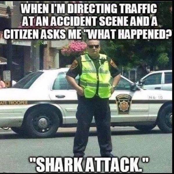 Halt, It's Meme Police!