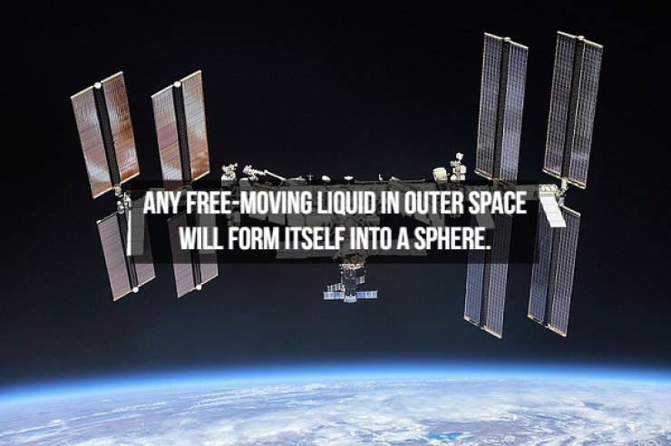 Dive Into These Space Facts