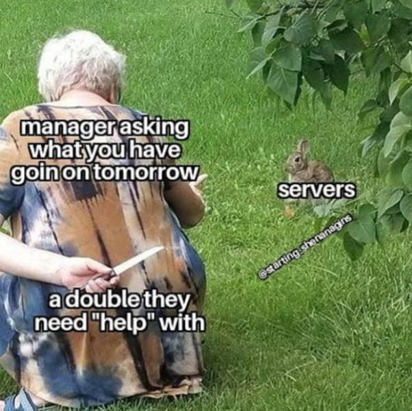 Servers, Unite With Memes!