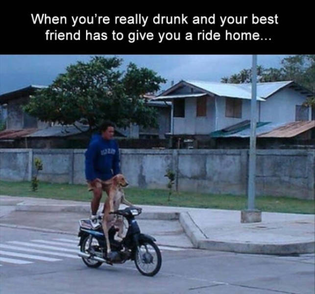 So Incredibly Drunk…