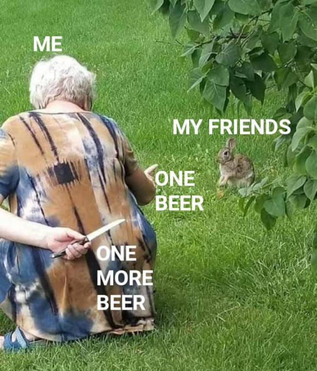 You Know Alcohol Memes Are Bad For You?