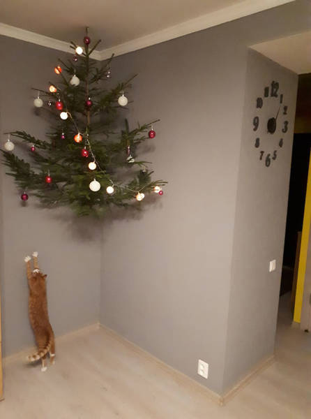 How To Save Your Christmas Tree From Your Pet