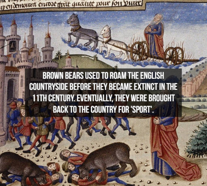 Medieval Facts Are Just Crazy…