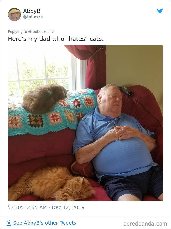 Actually, They Didn't Even Want Pets…