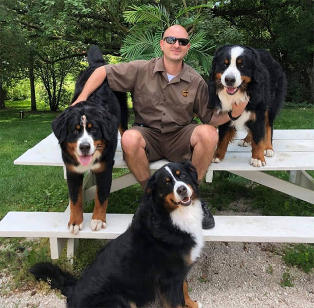 UPS Drivers Have A Special Facebook Page Where They Post Dogs They Meet While At Work