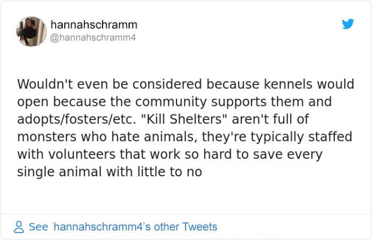 """Here's The Difference Between """"Kill"""" And """"No-Kill"""" Shelters"""
