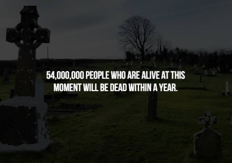 These Creepy Facts Might Be Stalking You
