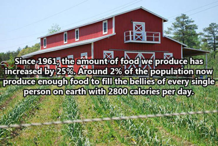 Amazing Facts That Will Show You How Far Humans Have Come