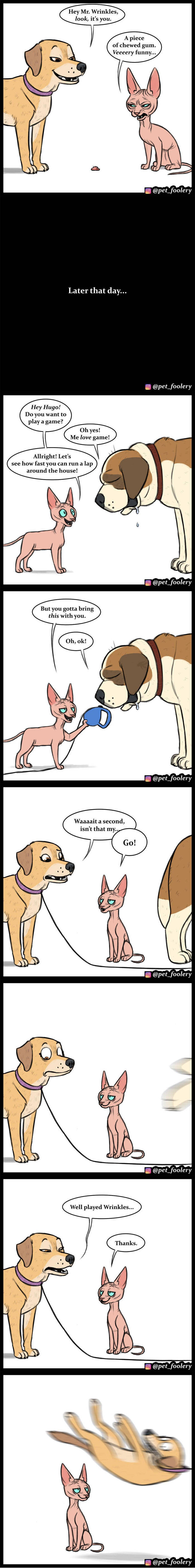 """""""Pet Foolery"""" Has Some Of The Best Animal Comics For You!"""