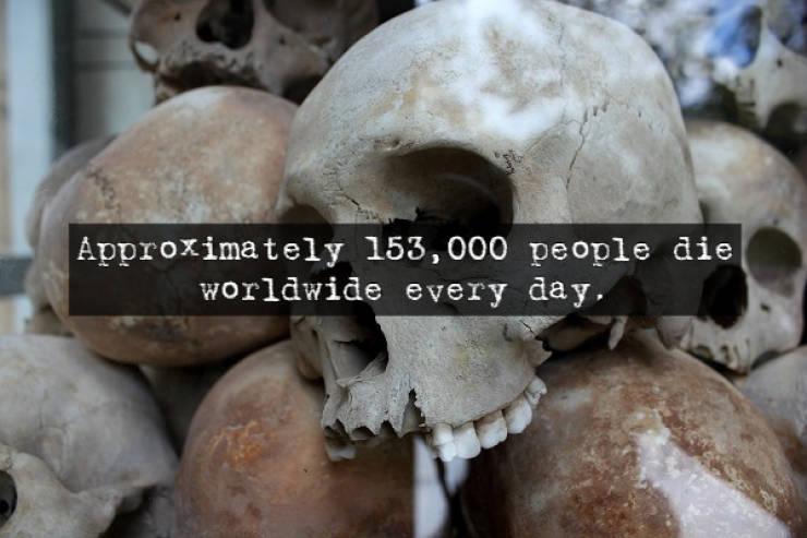 Wow, These Facts Are Scary!Wow, These Facts Are Scary!