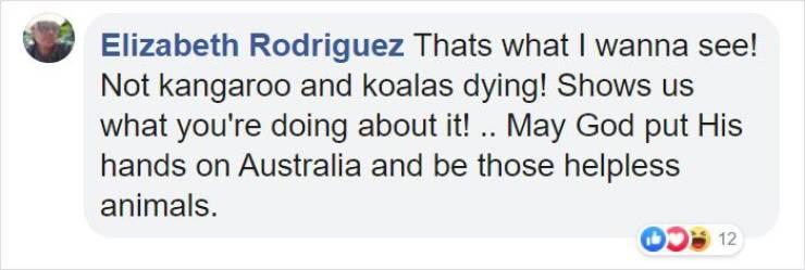 Vegetables For Starving Australian Animals!