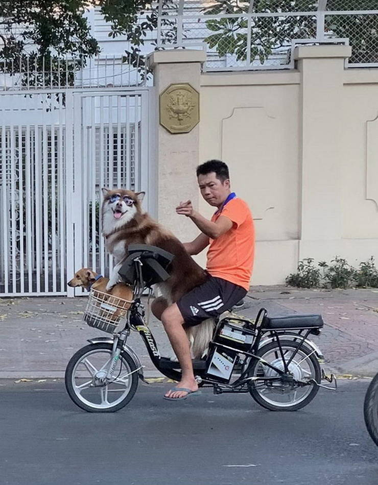 Asia Can Be Weird, But It's Always Funny!