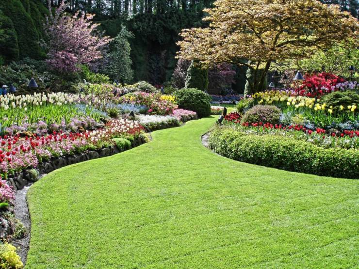 How can I landscape my garden cheaply?