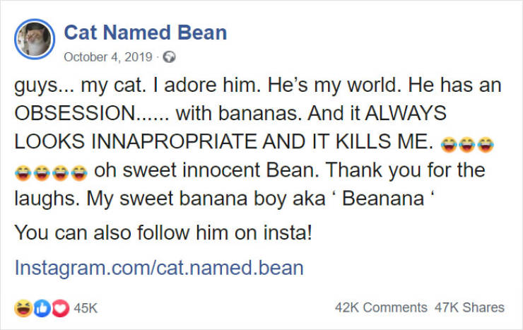 This Cat Is A Dirty Banana Lover!