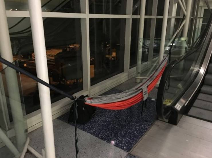 Hammocks Are Everywhere! EVERYWHERE!