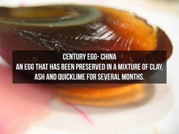 These Foods Aren't Just Exotic, They're Plain Weird!