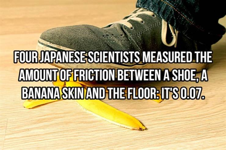 Science Facts Are Even More Interesting!