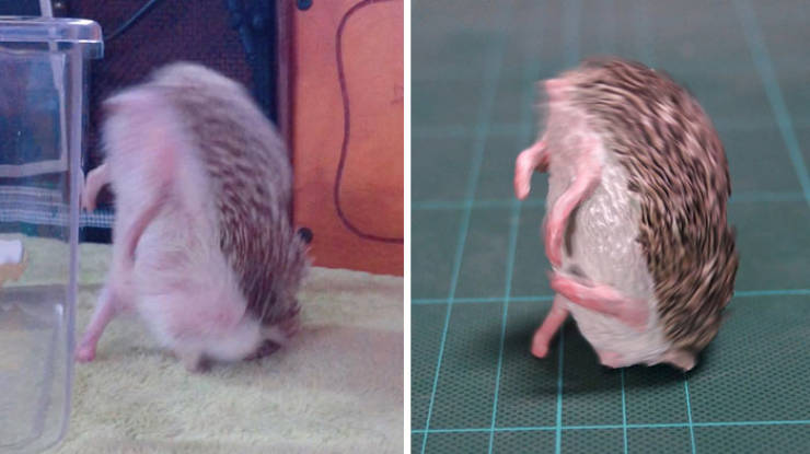 Japanese Artist Turns Funny Animals Into Even Funnier Sculptures
