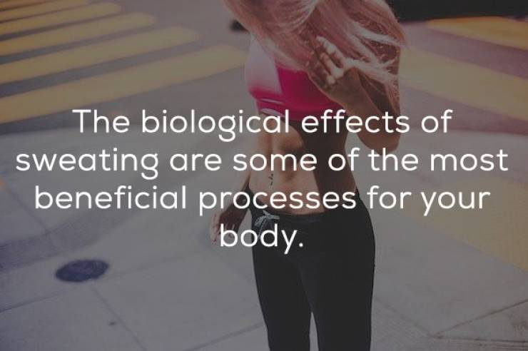Workout Facts Are Brain Workout