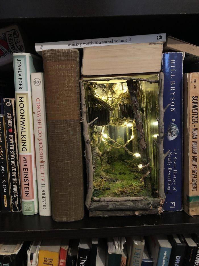 Harry Potter Bookshelf
