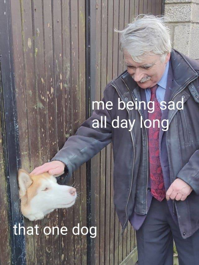 Wholesomeness Is The Essence Of These Memes