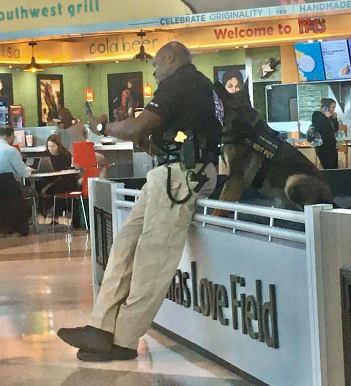 Woman Shares Photos Of Police Officer Taking Selfies With His Service Dog, He Delivers The Content
