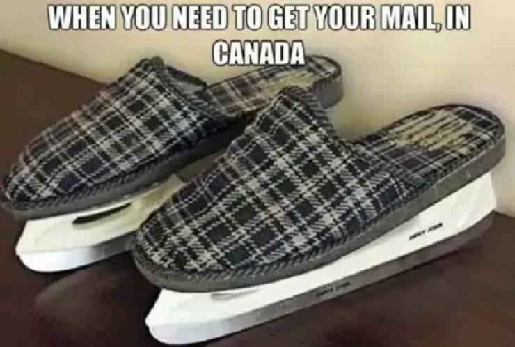 Just Canadian Things…
