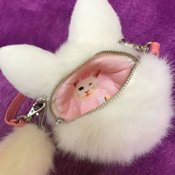 Japan Now Sells Cat Bags!